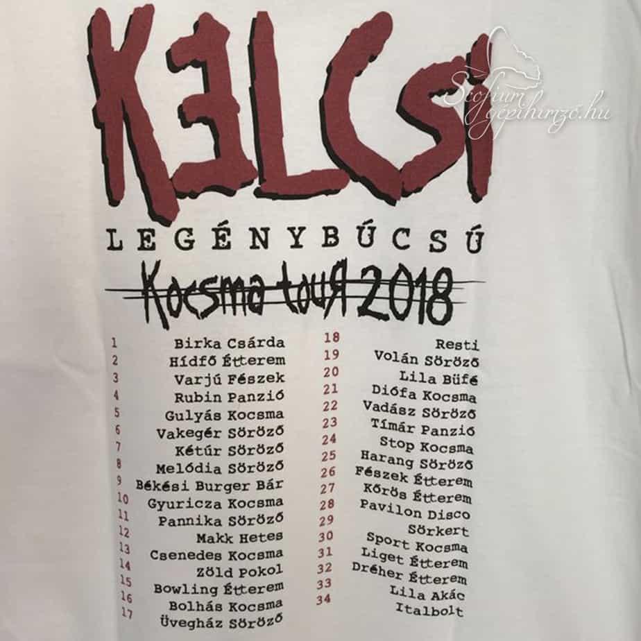 Legénybúcsó pólók - textil nyomtatás - Gépihímző.hu - Scofium Kft ... d3a7426ad4